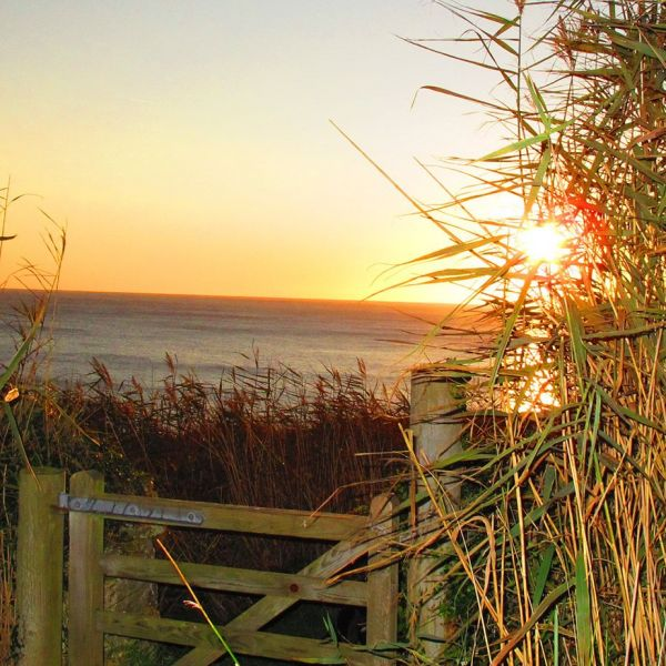Coast path at sunset