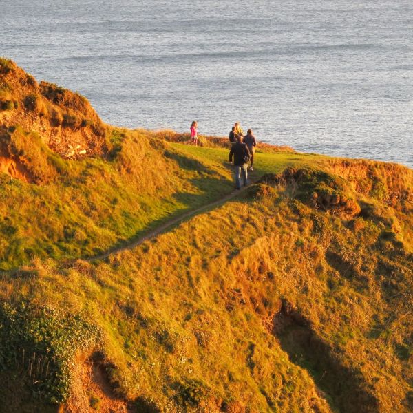 Coast path on evening sun
