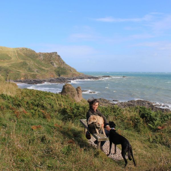 Coast path over mouth of Dart