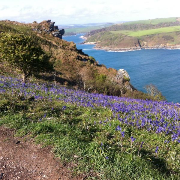 Coast path over Salcombe to Bolthead